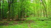 place PUISEUX-EN-RETZ - Point 13 - Photo 1