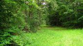 place SAINT-JEAN-AUX-BOIS - Point 44 - Photo 4
