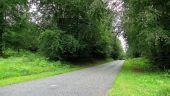 Point d'intérêt SAINT-JEAN-AUX-BOIS - Point 39 - Photo 15