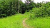 place SAINT-JEAN-AUX-BOIS - Point 45 - Photo 14