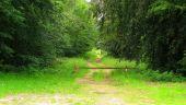 place SAINT-JEAN-AUX-BOIS - Point 31 - Photo 2