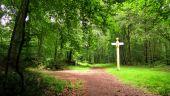 place SAINT-JEAN-AUX-BOIS - Point 43 - Photo 5