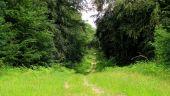 place SAINT-JEAN-AUX-BOIS - Point 33 - Photo 1