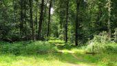 place SAINT-SAUVEUR - Point 29 - Photo 2