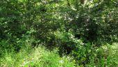 Point d'intérêt SAINT-JEAN-AUX-BOIS - Point 22 - Photo 1
