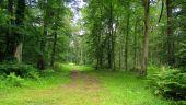place SAINT-SAUVEUR - Point 31 - Photo 1