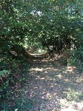 Point d'intérêt BREAL-SOUS-MONTFORT - Beau sentier à La Bouexière - Photo 1