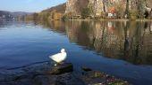 Point d'intérêt Namur - Wépion - Photo 1