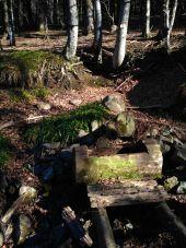 Point d'intérêt BUSSANG - Fontaine - Photo 1