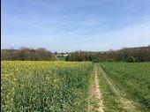 place Gesves - Sorinne-la-Longue - Photo 1