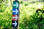 place Lierneux - Les flèches de toutes les couleurs - Photo 1