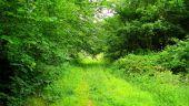 Point d'intérêt LA FERTE-MILON - Point 14 - Photo 4