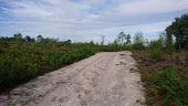 Point d'intérêt LE VAUDOUE - 04 - Chemin des Longuevaux - Photo 1