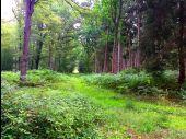 place SAINT-SAUVEUR - Point 42 - Photo 3