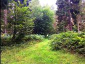 place SAINT-SAUVEUR - Point 42 - Photo 2
