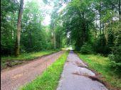 place SAINT-JEAN-AUX-BOIS - Point 2 - Photo 1