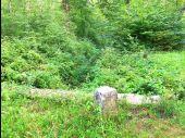 place LACROIX-SAINT-OUEN - Point 35 - Photo 1