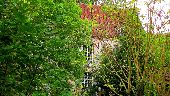 Point d'intérêt SAINT-JEAN-AUX-BOIS - Point 39 - Photo 1