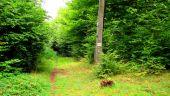 Point d'intérêt SAINT-JEAN-AUX-BOIS - Point 45 - Photo 2