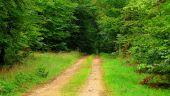 Point d'intérêt SAINT-JEAN-AUX-BOIS - Point 40 - Photo 5