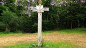 Point d'intérêt SAINT-JEAN-AUX-BOIS - Point 40 - Photo 4
