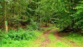 Point d'intérêt SAINT-JEAN-AUX-BOIS - Point 40 - Photo 1