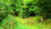 Point d'intérêt MORIENVAL - Point 8 - Photo 2