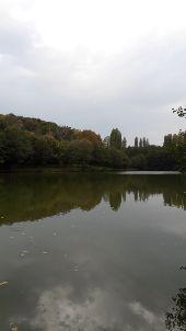 place CHANGE - Plan d'eau  du Chemin Vert  à Changé - Photo 1