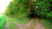 Point d'intérêt ANCIENVILLE - Point 20 - Photo 2