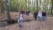 Point d'intérêt MAUREPAS - Sur un tapis de feuilles - Photo 1