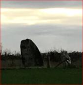place LE SEL-DE-BRETAGNE - Les Menhirs du Champ Harel - Photo 1