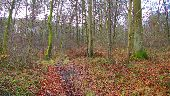 place MORIENVAL - Point 23 - Photo 1
