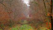 place SAINT-JEAN-AUX-BOIS - Point 10 - Photo 3