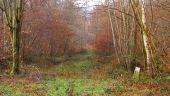 place SAINT-JEAN-AUX-BOIS - Point 8 - Photo 1
