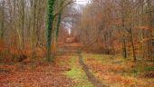 place SAINT-JEAN-AUX-BOIS - Point 10 - Photo 2