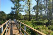 Point d'intérêt Sainte-Ode - Passerelle de la réserve naturelle d'Orti - Photo 1