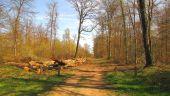 place LACROIX-SAINT-OUEN - Point 30 - Photo 1