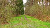 place SAINT-JEAN-AUX-BOIS - Point 44 - Photo 1