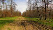 place COMPIEGNE - Point 34 - Photo 3