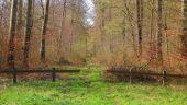 place LACROIX-SAINT-OUEN - 21 - Photo 2