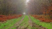 place SAINT-JEAN-AUX-BOIS - Point 3 - Photo 1