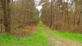place SAINT-JEAN-AUX-BOIS - Point 45 - Photo 1