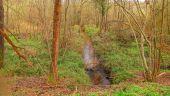 place SAINT-JEAN-AUX-BOIS - Point 47 - Photo 1