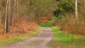 place SAINT-JEAN-AUX-BOIS - Point 46 - Photo 1