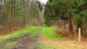 place VIEUX-MOULIN - Point 42 - Photo 4