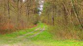 place SAINT-JEAN-AUX-BOIS - Point 46 - Photo 2