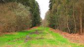 place VIEUX-MOULIN - Point 42 - Photo 3