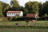 place Rochefort - Archéoparc de Malagne la gallo-romaine - Photo 1