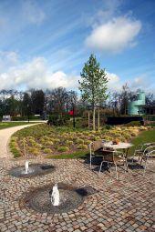 Point d'intérêt Rochefort - Domaine Provincial de Chevetogne - Photo 2