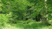 place LACROIX-SAINT-OUEN - Point 33 - Photo 4